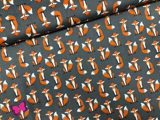 Fuchs Webware Fabulous Foxes Robert Kaufmann